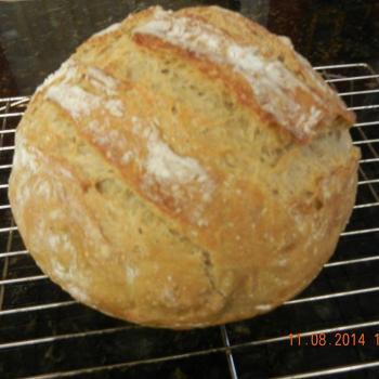 Agnes Sourdough Scallion pancakes first overview