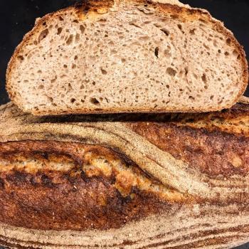 Artaxerxes Bread  first overview