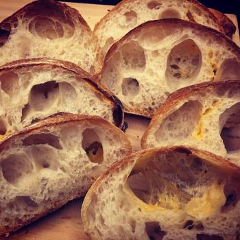 Autumn Sandwich bread, ciabatta, carob cheese sourdough, semolina sourdough second overview