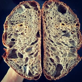 Autumn Sandwich bread, ciabatta, carob cheese sourdough, semolina sourdough first slice