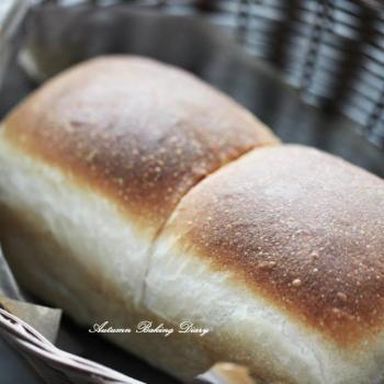 Autumn Soft bun, challah bun, panettone, malted grain sourdough first overview