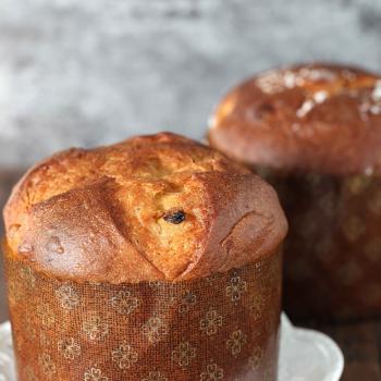 Autumn Soft bun, challah bun, panettone, malted grain sourdough first slice