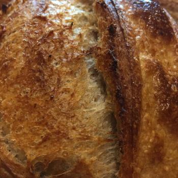 Barye Breads second overview