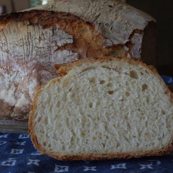 Basic Levain All about Flour second overview