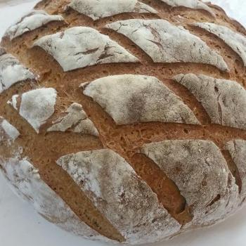 Basic Levain All about Flour second slice