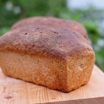 Bear Bread first overview