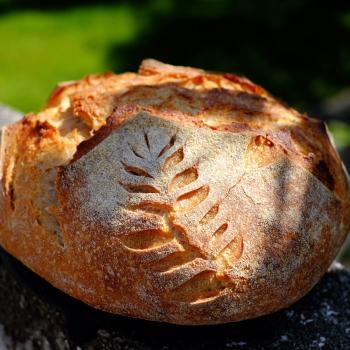 Bear Bread second slice
