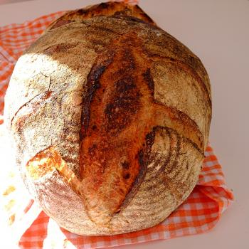 Betty San Fransisco bread with enkir flour first overview
