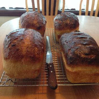 BH white every day loaves of bread, pancakes, babkas second overview