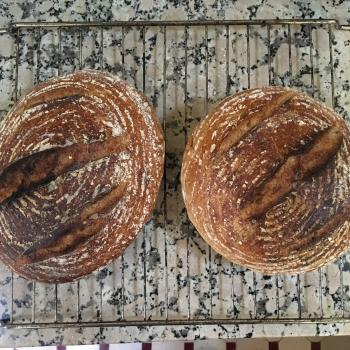 BOB MADE IN MOROCCO Sourdough Bread first overview
