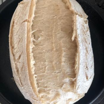 BRIDE OF THE MONSTER Batard first slice