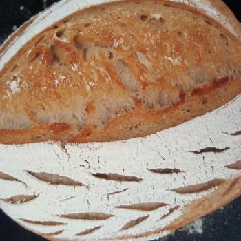 Bublé  Basic sourdough batard first overview