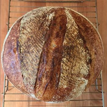 Budo#1 Pain de Campagne second overview