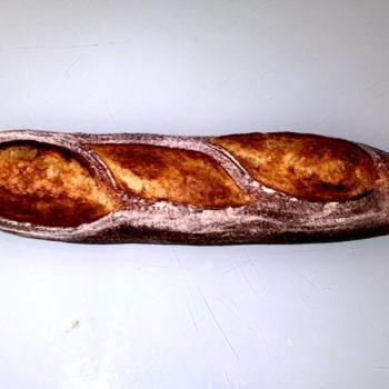 Campania Baguettes first overview