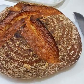 Catherine's Recovery Starter Sourdough loaf first overview