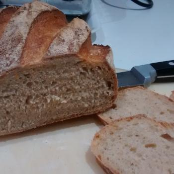 Catherine's Recovery Starter Sourdough loaf second slice
