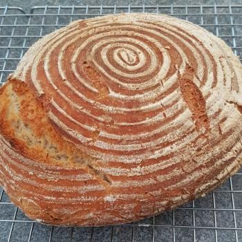 Charlie Sourdough Loaf first overview
