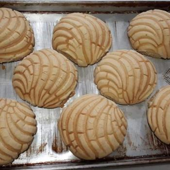 Conchita Conchas ( mexican sweet buns)  second overview
