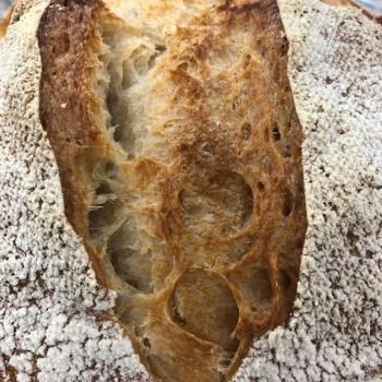 ELIAS pane casereccio first slice