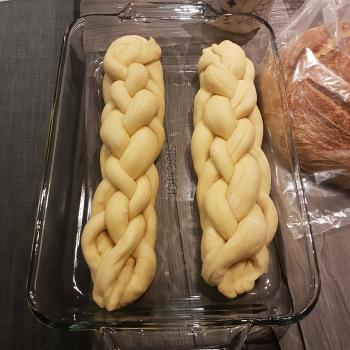Fievel Sourdough Challah first overview