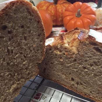 Hapa wheat Sample bakes first slice