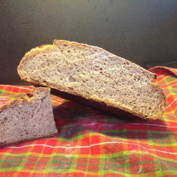 Hapa wheat Sample bakes second slice