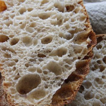 Hmizi all plain breads second overview
