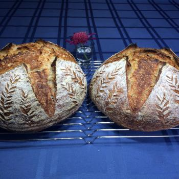 Iris  Sourdough boule second overview