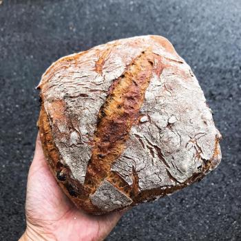 June Sourdough walnut cranberry bread second overview