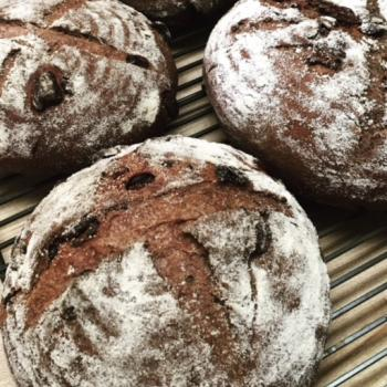 Karma Chocolate Sour Cherry bread first overview