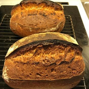 Kunkku Bread first overview