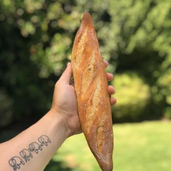 La Chilean Frenchie Baguettes first overview