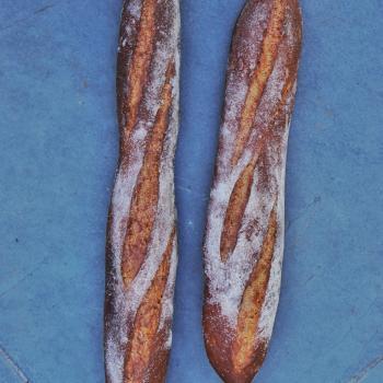 La Chilean Frenchie Baguettes second overview