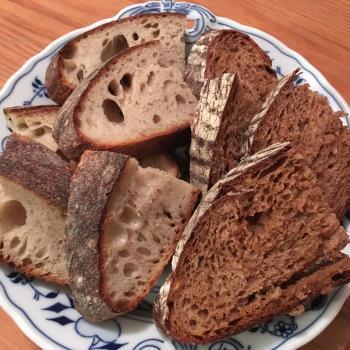 Levain on a Prayer Standard Sourdough 16hr total  first slice