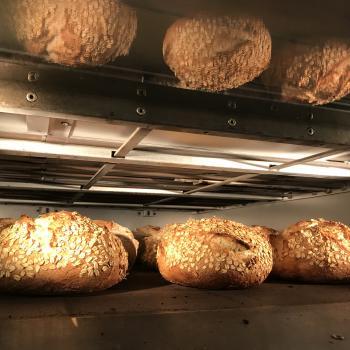 Lisa Sourdough oat first overview