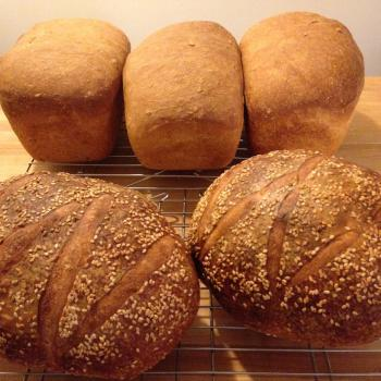 MacPike Family Starter Sourdough Bread first overview