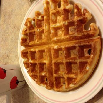 Mah starter Waffles first overview