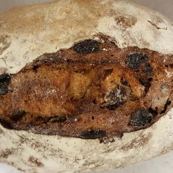 Mang Collar's Sourdough Speija Bread (Fruit Bread) first overview