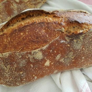 Masita Bread second overview