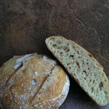 Miss Bubbles Hove's loaves first overview