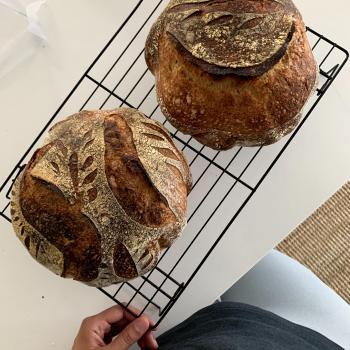 Mz. Bubblez sourdough bread second overview