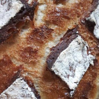 NDG basic sourdough bread second overview