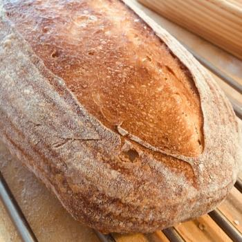 NoName Standard loaf first overview