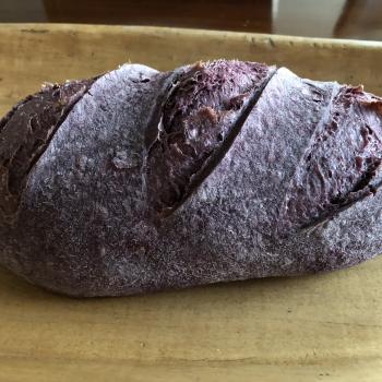 Nuna Purple corn bread first overview
