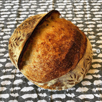 Of course I still love you Manitoba / Spelt Flour Bread first overview