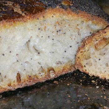 Onion Poppy Seed Sourdough Onion Poppy Seed Sourdough first slice