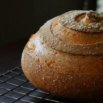 Oregon 2 Kansas Breads second overview