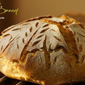 Oregon 2 Kansas Breads first slice