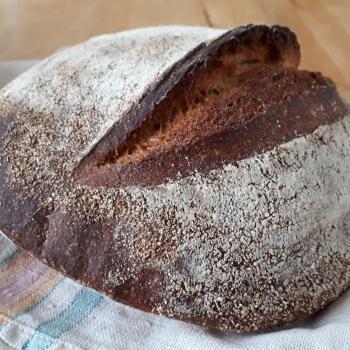Orvokki Wheat & rye bread first overview