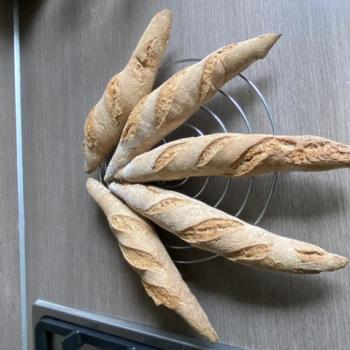 Oscar Baguettes first overview